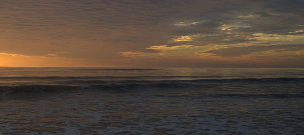 Outer Banks Art Print featuring the photograph Consider by Mim White