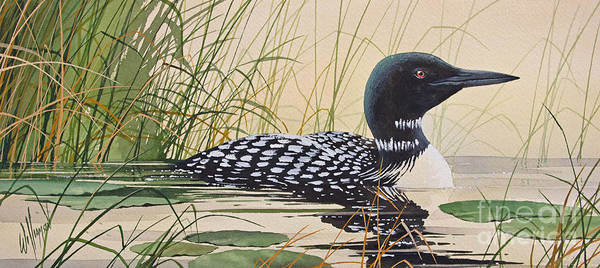 Image result for loon painting