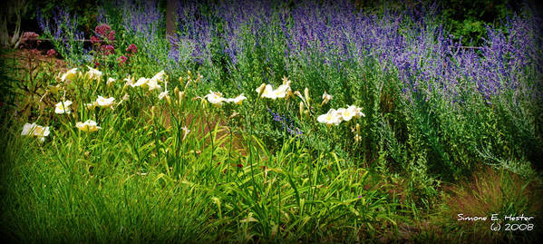 Wild Flowers Art Print featuring the photograph Wild Grow by Simone Hester