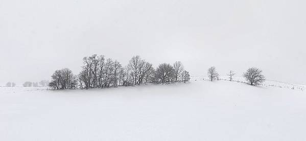 Winter Art Print featuring the photograph Winter Tree Line In Indiana by Julie Dant