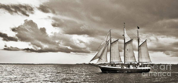 Tall Ship Print featuring the photograph Schooner Pride Tallship Charleston Sc by Dustin K Ryan