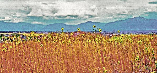 Fields Art Print featuring the photograph Sunflower Field 1 by Steve Ohlsen