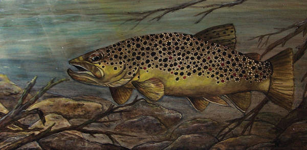 Trout Art Print featuring the painting Golden Brown by Kathy Lovelace