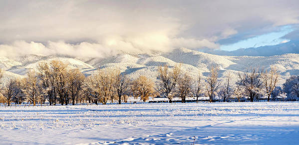 Photography Art Print featuring the photograph Pasture Land Covered In Snow With Taos by Panoramic Images