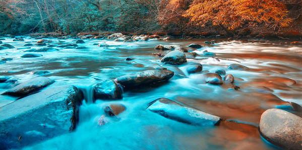 Great Smoky Mountains Art Print featuring the photograph A Moment In The Great Smoky Mountains by Rich Leighton