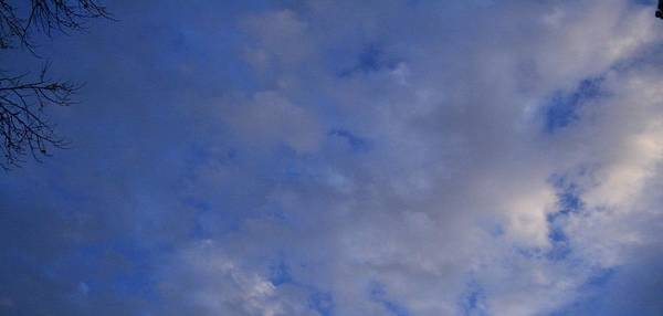 Clouds Art Print featuring the photograph Cloudy Twigs by Joshua Sunday