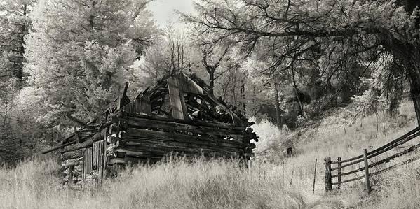 Cabin Art Print featuring the photograph Green Mountain Cabin by Bill Kellett