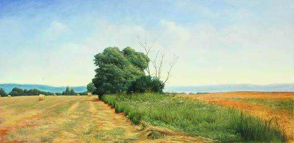 Landscape Art Print featuring the painting Skaneatles Field by Stephen Bluto