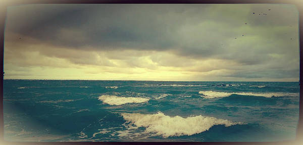 Beach Art Print featuring the photograph Storm On The Bay by Chris Lewis