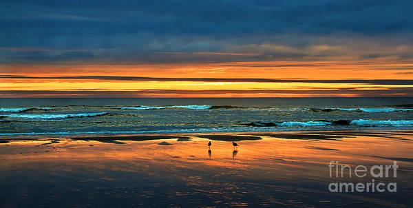 Sunset Art Print featuring the photograph Golden Pacific by Robert Bales
