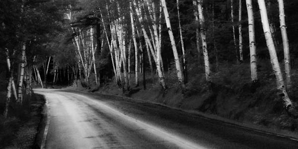 Maine Art Print featuring the photograph Woodland Drive by Wendell Thompson