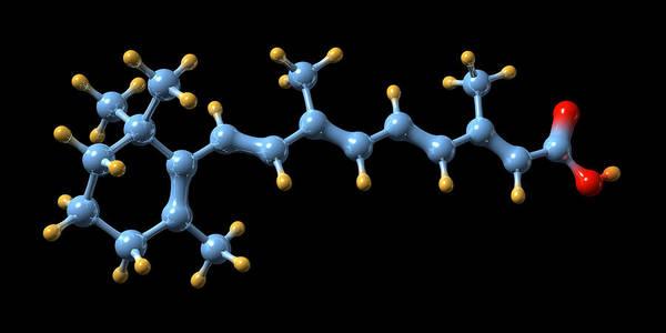Retinoic Acid Art Print featuring the photograph Vitamin A (retinoic Acid) Molecule by Dr Mark J. Winter