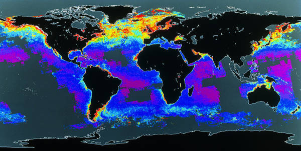 Phytoplankton Distribution Art Print featuring the photograph False-col Satellite Image Of World's Oceans by Dr Gene Feldman, Nasa Gsfc