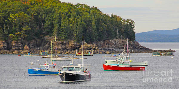 Lobster Boats Art Print featuring the photograph Lobster Boats In Bar Harbor by Jack Schultz