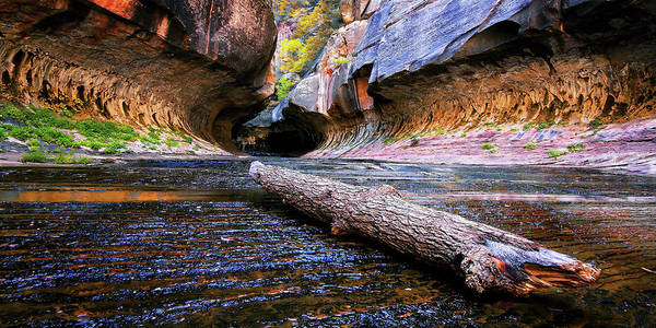 Zion Art Print featuring the photograph Pointing The Way by William Gillam