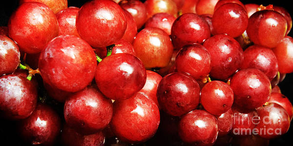 Grapes Art Print featuring the photograph Red Grape Pano by Andee Design