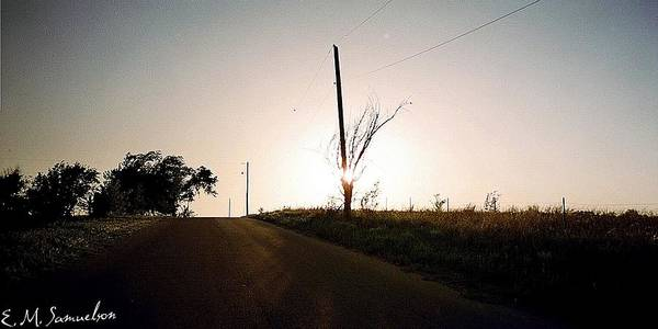 Tree Art Print featuring the photograph Setting Sun by Elise Samuelson