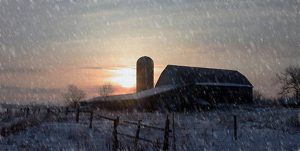 Snow Art Print featuring the photograph Snowy Farm by Evelyn Patrick