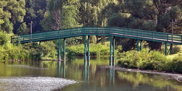 Bridge Art Print featuring the photograph The Bridge by Sholeh Mesbah