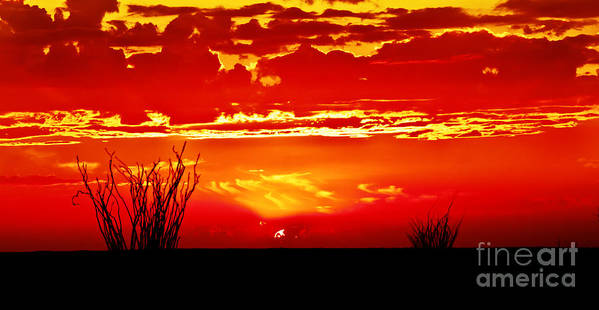 Arizona Art Print featuring the photograph Southwest Sunset by Robert Bales