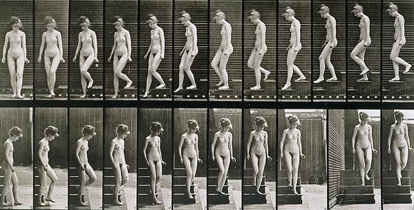 Woman Descending Steps Art Print featuring the photograph Woman Descending Steps by Eadweard Muybridge