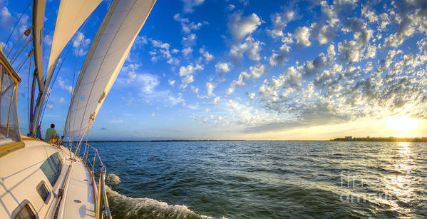 Perfect Evening Sailing On The Charleston Harbor Art Print featuring the photograph Perfect Evening Sailing On The Charleston Harbor by Dustin K Ryan