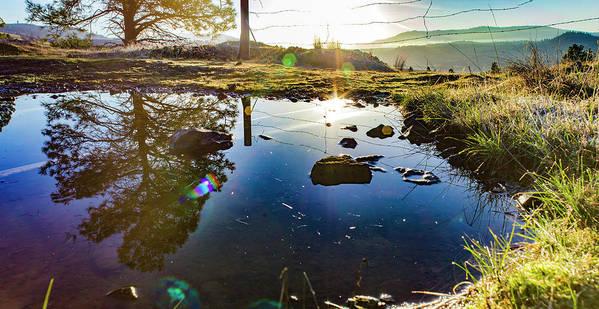 Art Print featuring the photograph Catherine Creek Pond by Joseph Broschart