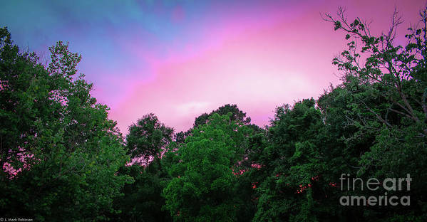 Sunset In Athens Ga Art Print featuring the photograph Cotton Candy Sunset by Josh-Mark Robinson