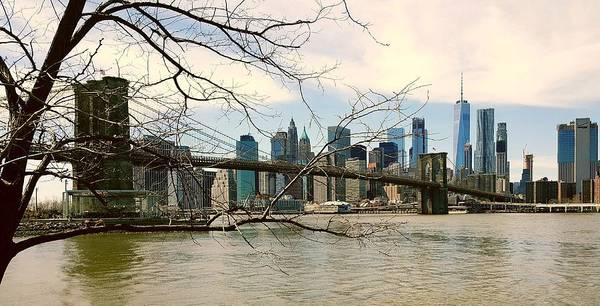 Bridge Art Print featuring the photograph The Brooklyn Bridge by Elizabeth La Caille