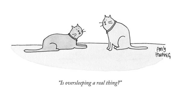 Cat Art Print featuring the drawing Is Oversleeping A Real Thing? by Amy Hwang