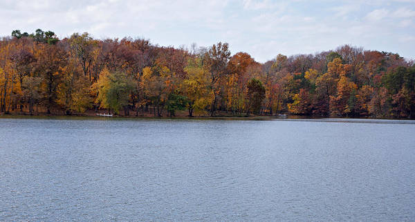 Autumn Trees Art Print featuring the photograph Scales Lake In Autumn by Sandy Keeton