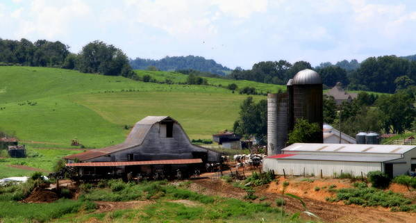 Barns Art Print featuring the photograph Old Dairy Barn by Karen Wiles
