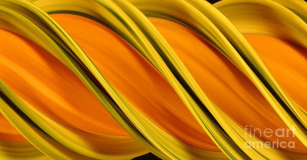 Design Art Print featuring the photograph Peripheral Streak Image Of Squash by Ted Kinsman
