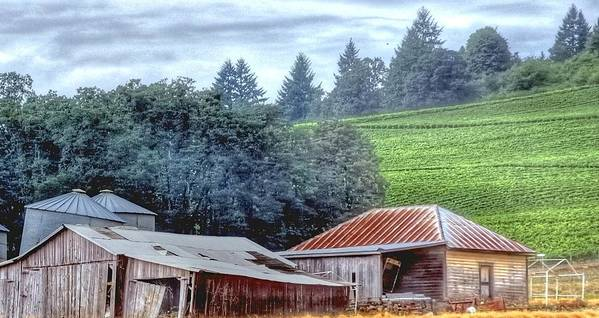 Shed Art Print featuring the photograph Shed And Grain Bins 17238 by Jerry Sodorff