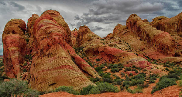 Landscape Art Print featuring the photograph Untitled by Cyrus Javid