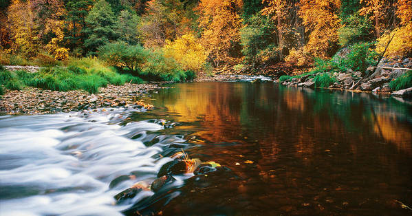 Photography Art Print featuring the photograph Autumn On The Merced River Yosemite Np by Edward Mendes