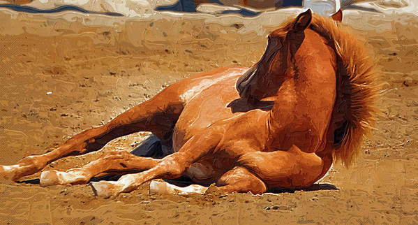 Horse Art Print featuring the painting Colt Lying Down by Clarence Alford