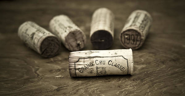 Wine Print featuring the photograph Grand Cru Classe by Frank Tschakert