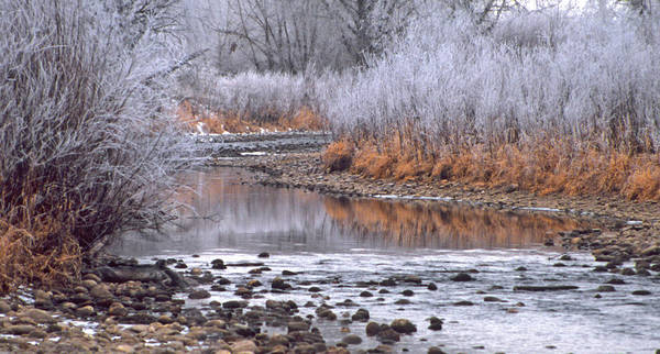 Winter Art Print featuring the photograph Winter River by Bruce Gilbert
