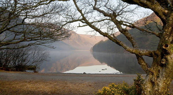 Lake Art Print featuring the photograph Early Morning Glendalough by Thomas Glover