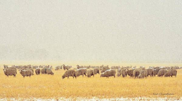 Sheep Art Print featuring the digital art Sheep In Snow by Kae Cheatham