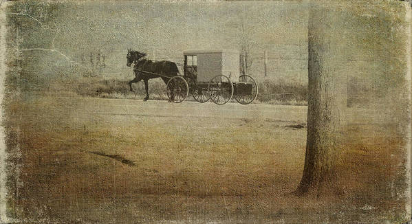 Amish Print featuring the photograph The Ride Home by Kathy Jennings