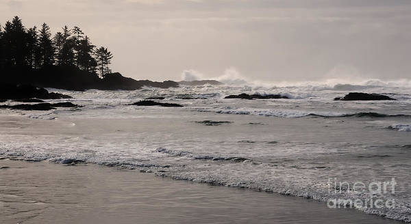 Tofino Art Print featuring the photograph Beach At Tofino by Vivian Christopher
