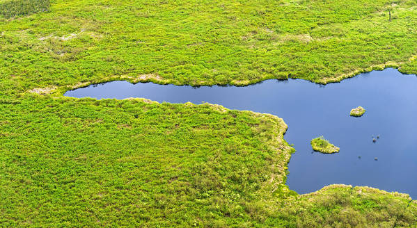 Horizontal Art Print featuring the photograph The Pantanal Seen From The Sky Vii by Picture by Tambako the Jaguar