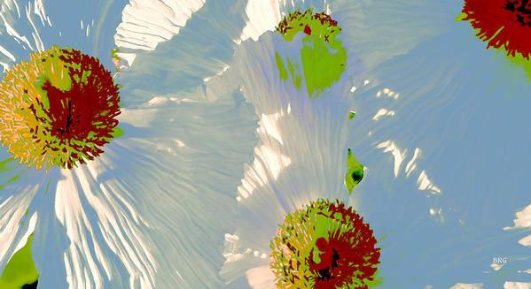 Floral Abstract Art Print featuring the photograph Matilija Poppies Pop Art by Ben and Raisa Gertsberg
