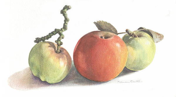 Fruit Art Print featuring the painting Three Apples by Maureen Carter
