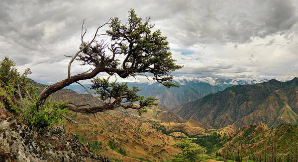 Altitude Art Print featuring the photograph Hells Canyon Panoramic by Leland D Howard