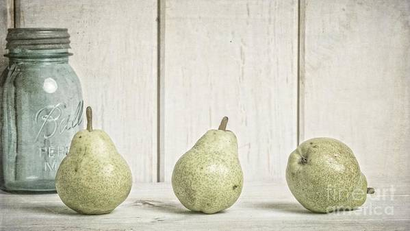 Pear Art Print featuring the photograph Three Pear by Edward Fielding