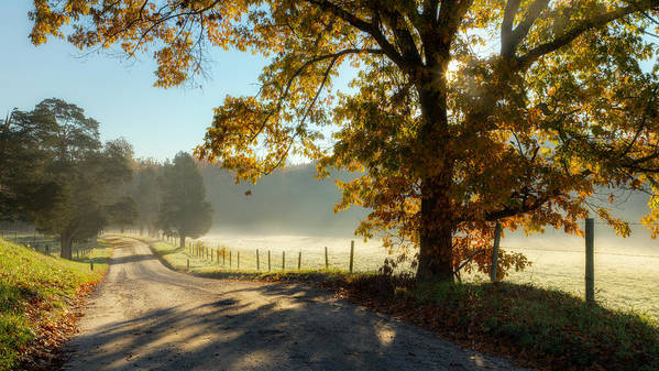 Fog Art Print featuring the photograph Autumn Road by Bill Wakeley