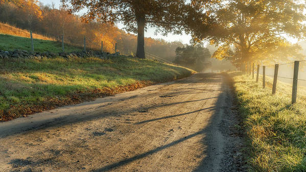 Fog Print featuring the photograph Back Road Morning by Bill Wakeley